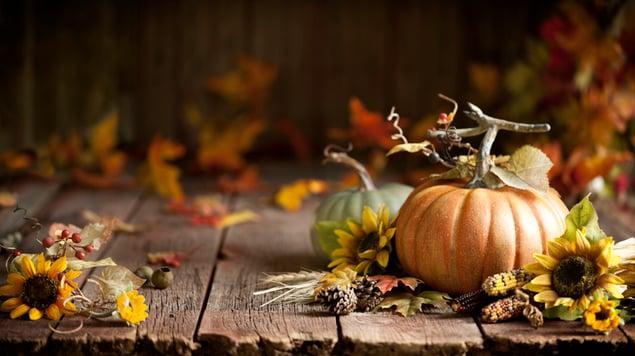 Autumn Thanksgiving pumpkin and leaf arrangement on old wood background.
