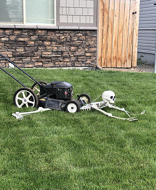 Lawn mower is running over a helpless skeleton - funny halloween decoration