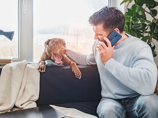 A man in a sweater talks on the phone while rubbing his dog's ear; for the Talk to Someone About It section