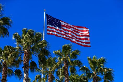 American flag waving above palm trees.